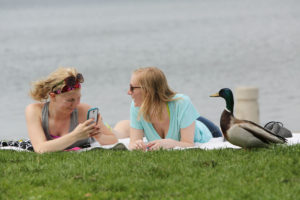Kate Werner, left, and Maurissa Myers get a visit from a mallard, who stops and poses for a photo, while they enjoy the warm weather at James Madison Park on Lake Mendota last May.  From May 26 through Sept. 21, there is no calendar day on which the record high temperature in Madison is not at least 90. (Photo credit - Amber Arnold, State Journal archives)